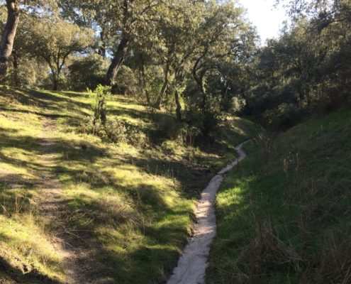 Ein eingegrabener Wasserlauf in El Monte de El Pardo