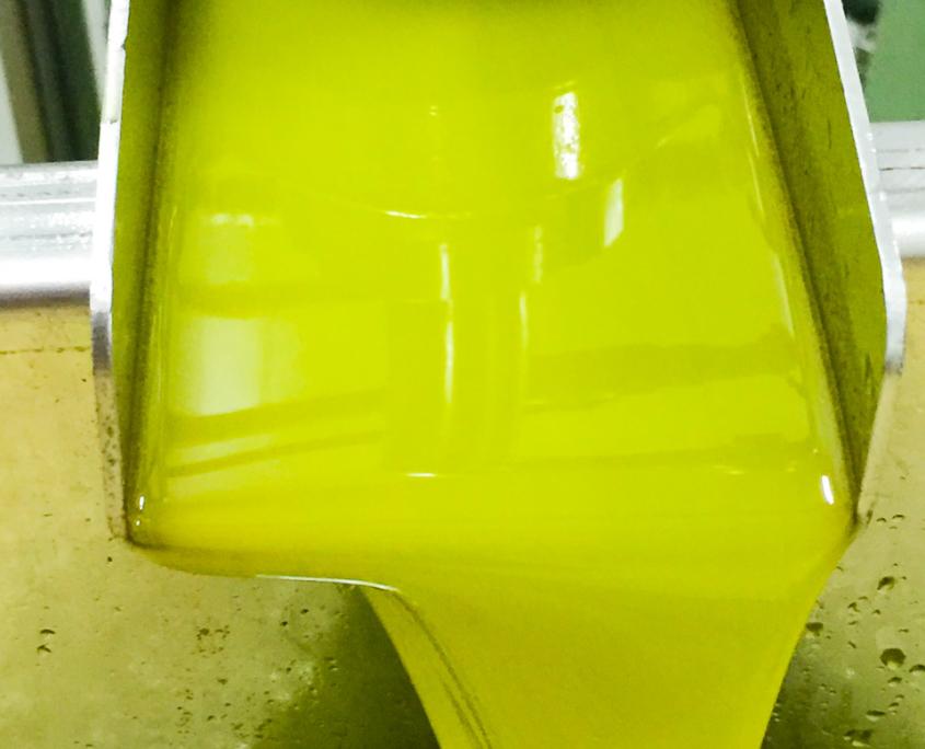 So kommt das native Olivenöl extra aus dem Decanters heraus
