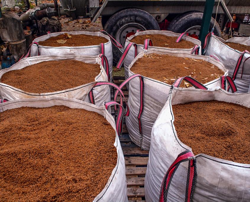 Die zerkleinerten Kerne werden zum Heizen verwendet