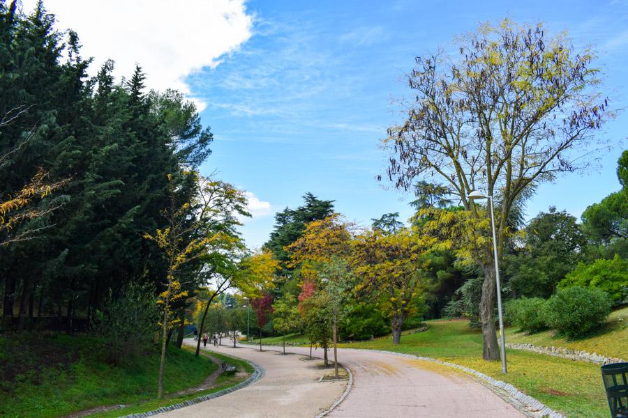 Die ehemalige Straße durch die Dehesa de la Villa wurde zum Fahrradweg